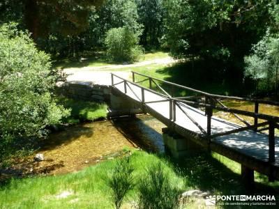 Pesquerías Reales - Monte de Valsaín; la panera el espinar; findes;botas senderismo verano